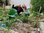 Crowdfunding cissey chouette