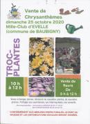 Vente de chrysanthemes